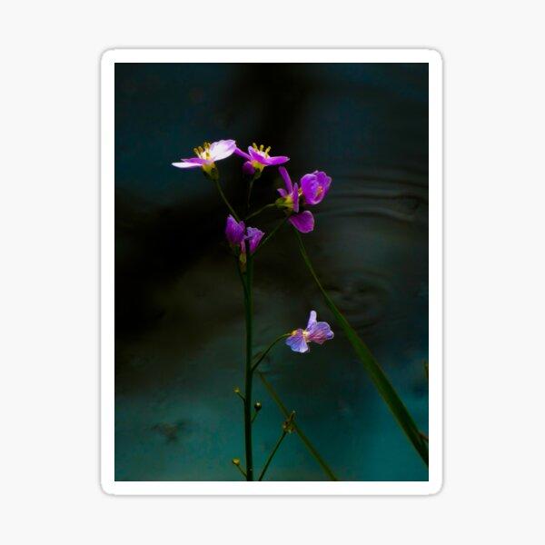purple flowers by Alet Sticker
