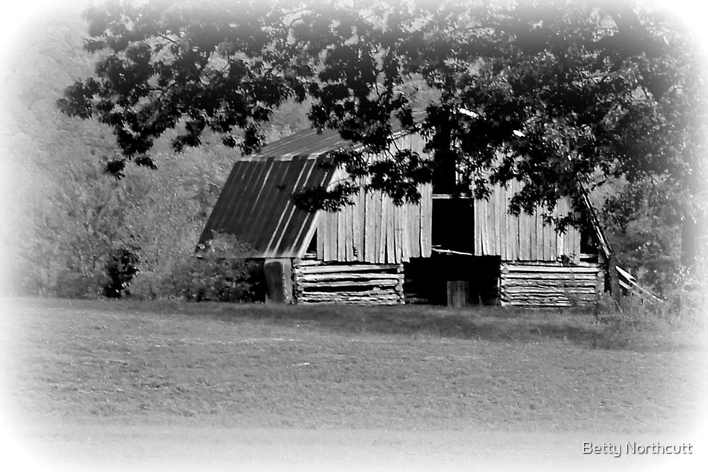 Arkansas Barn Two by Betty Northcutt