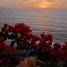 In the last Glimpse of Sunset - En el ultimo Rayo del Luz Solar by PtoVallartaMex