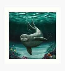 """Hawaiian Monk Seal"" by Amber Marine ~ Acrylic painting, art © 2015 Art Print"