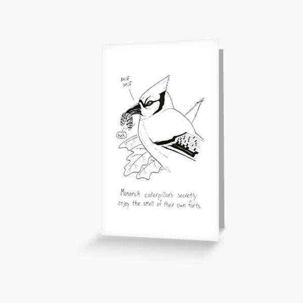 Monarch Caterpillars: We all do it! Greeting Card