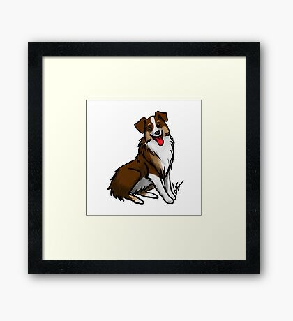 Australian Shepherd - Tri Color Framed Print