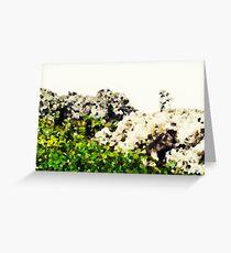 Graphic Alpine Meadows #3, California Greeting Card
