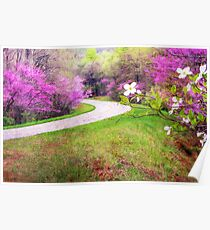 Blue Ridge Kind of Spring Poster