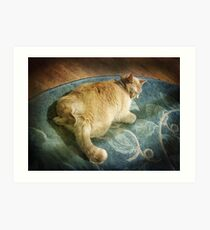 Fat Cat on a Rug Art Print