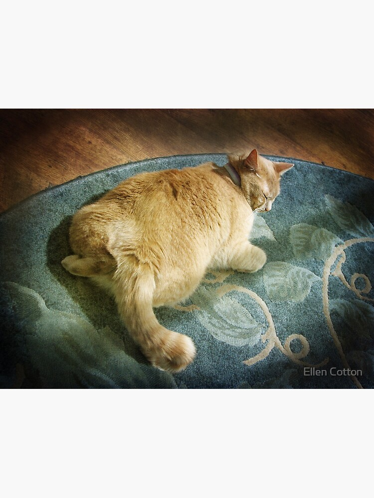 Fat Cat on a Rug by ellcot
