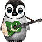 Baby-Pinguin, der pakistanische Flaggen-Gitarre spielt von jeff bartels
