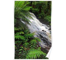 Cora Lynn Falls. Heart of the cumberland valley. Camberville  Poster