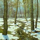 SNOW MELTING by edisandu