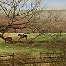 Horsies by browncardinal8