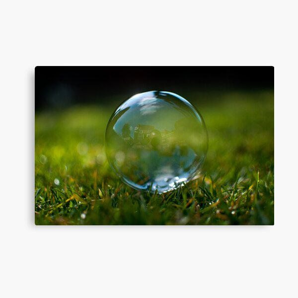 Living in a Bubble. Canvas Print