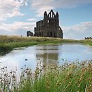 Whitby Abbey Ruins by David Tovey