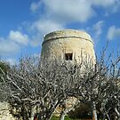 Old Gozo by DeborahDinah