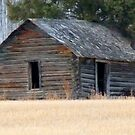 Old Homestead Farm House   by MaeBelle