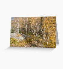 NWT Birch Greeting Card