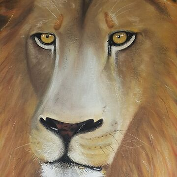 LION by YasminChambers