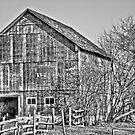 Wisconsin Barn  by Marcia Rubin