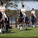 Mulawa Performace Horses by SylanPhotos