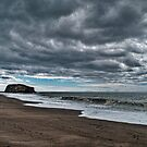Goat Rock Beach by David Akers