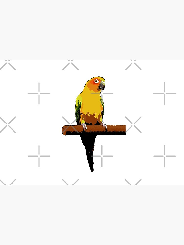 Sun Conure Vector by tribbledesign