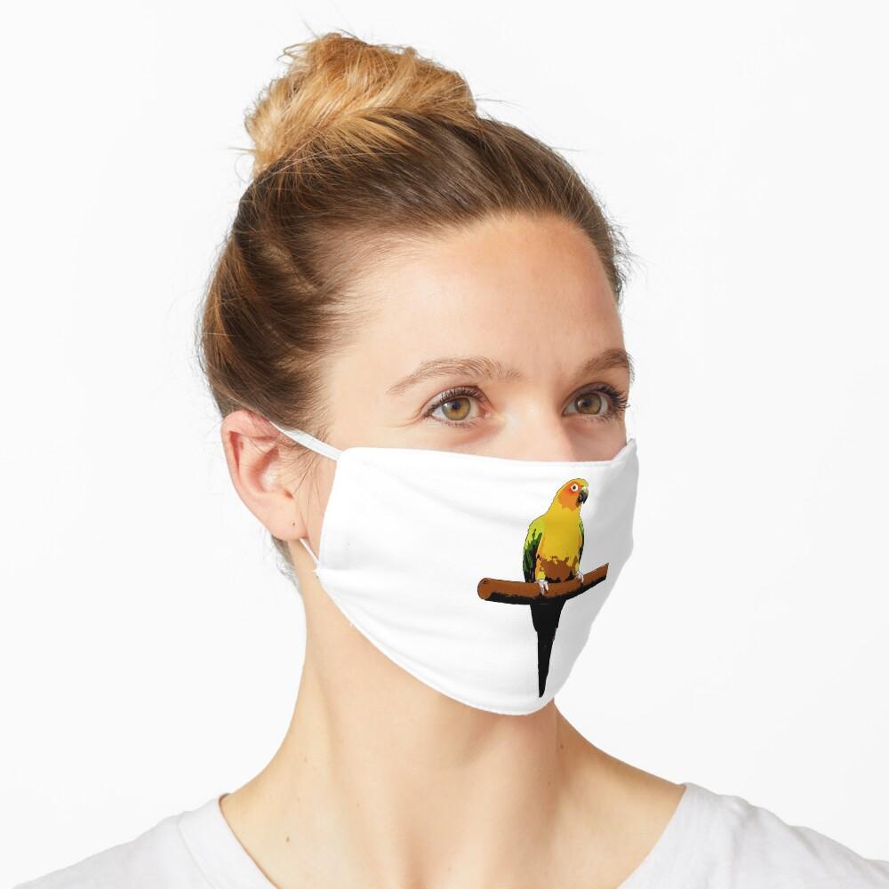 Sun Conure Vector Mask