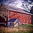 Big Red Wisconsin Barn  by Marcia Rubin