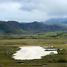 Bathurst Harbour Airstrip - Tasmania by clickedbynic