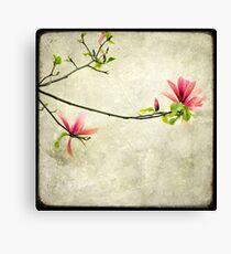Branche de Magnolia Canvas Print