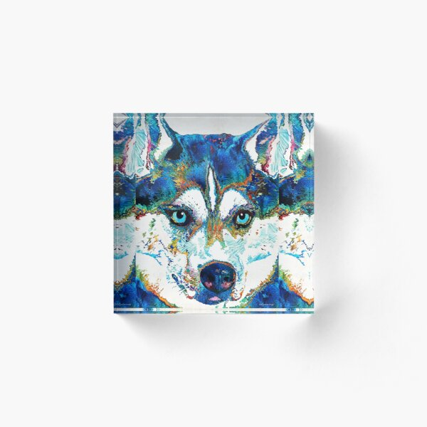 Colorful Husky Dog Art by Sharon Cummings Acrylic Block