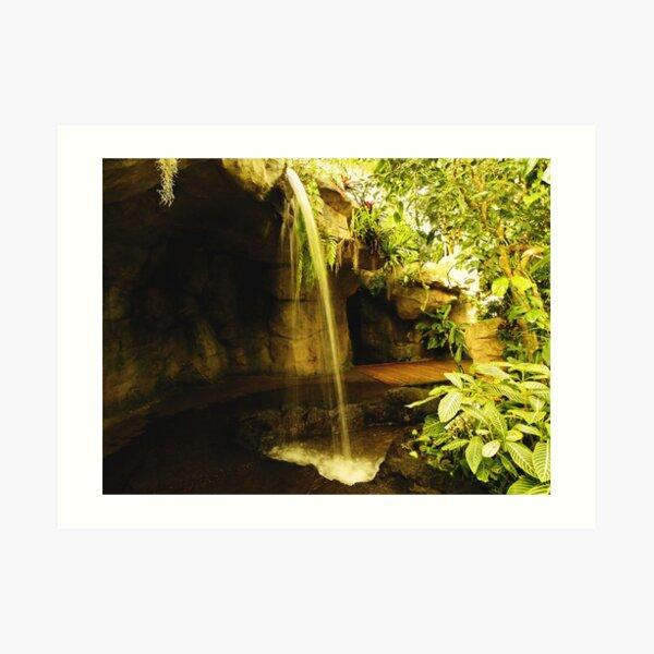 Waterfall in the garden Art Print