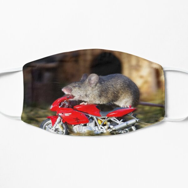 Biker Mouse - make it stop is to fast. Mask