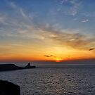 Worms Head Sunset  by Radeon12345