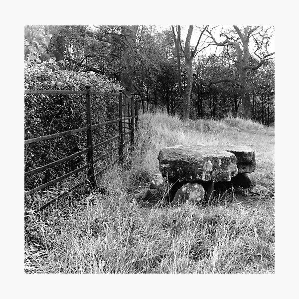 Phoenix Park Dolmen Photographic Print