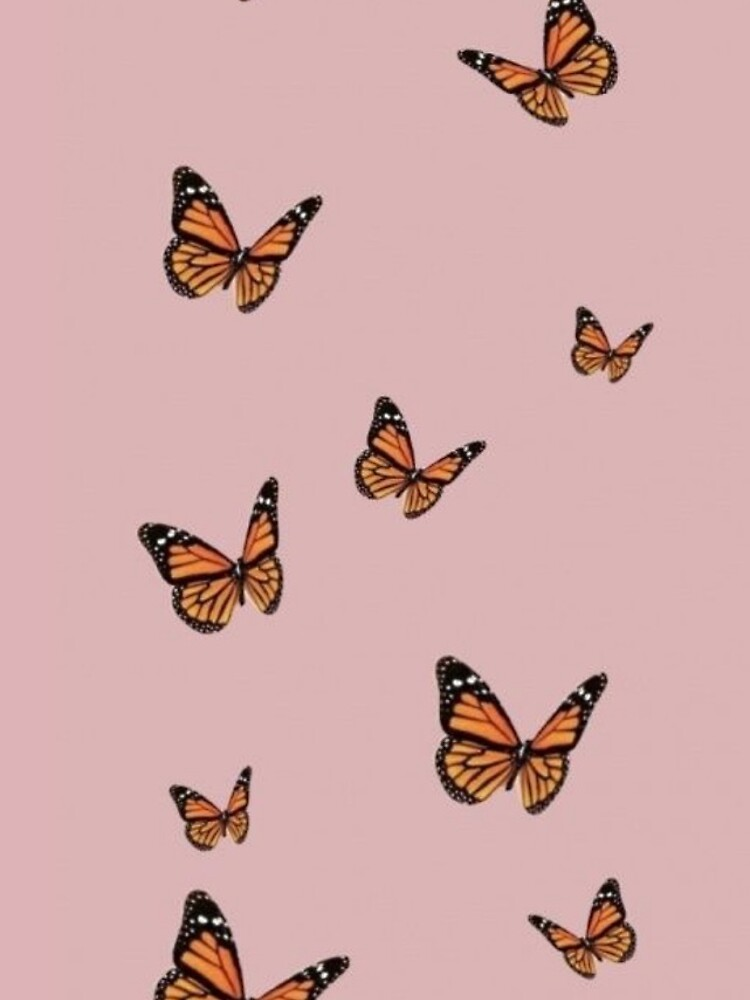 Monarch Butterflies with Pink Background by paytonstach