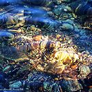 Penetrating the Depths (Hall Lake) by rocamiadesign