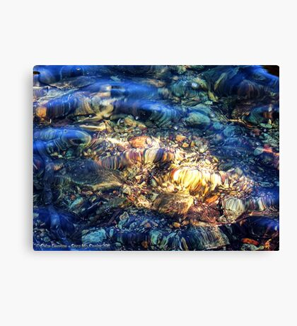 Penetrating the Depths (Hall Lake) Canvas Print
