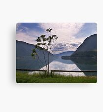 Evening at Lower Arrow Lake Canvas Print