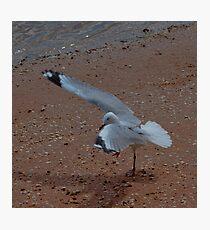 One-legged Yoga Asana Photographic Print