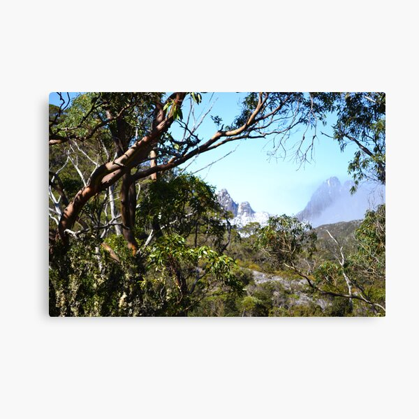 A window to Cradle Mountain.  Canvas Print