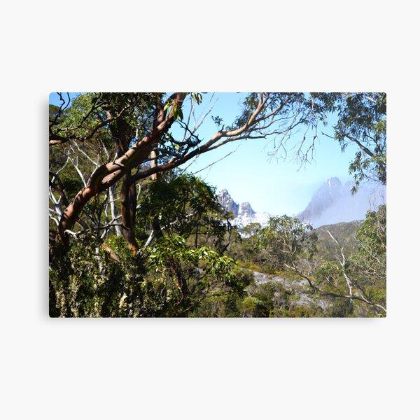 A window to Cradle Mountain.  Metal Print