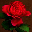 My love a red, red rose by Christine Ford