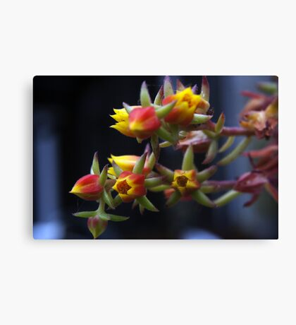 Red & Yellow Flowers Canvas Print