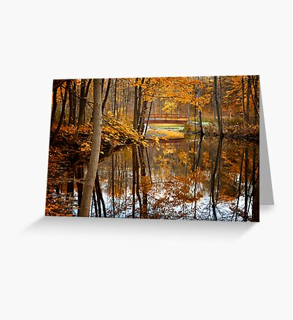 Beautiful Reflections Greeting Card