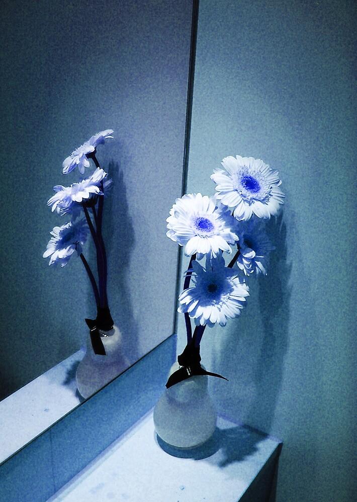Gerbera Daisies in the Mirror by peterrobinsonjr