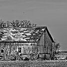 Old Wisconsin Barn  by Marcia Rubin