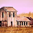 Beautiful old Ohio Barn  by Marcia Rubin