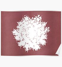 Queen Anne's Lace in Pink & White Poster