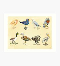 Art Fowl Art Print