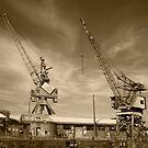 Cockatoo Dock Crane Twins by Richard  Windeyer