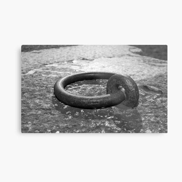 Cockatoo Dock Iron Ring Metal Print